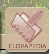 Rncyklopedia, flora, rosliny, florapedia